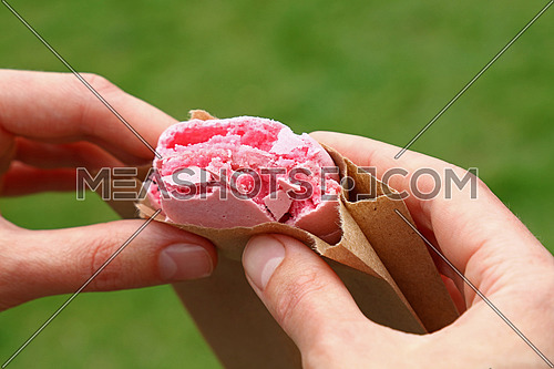 Woman eating pink macaron cookie holding it with two hands over green grass background