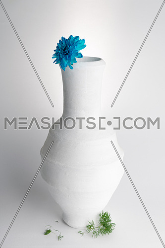 Still life composition of white pottery vase and blue flower on white background