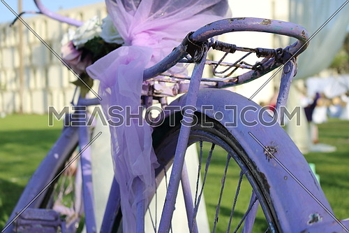 purple bicycle with tie ribbon and flowers decoration