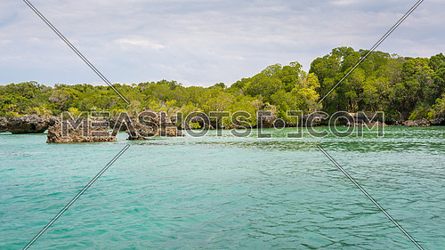 Seascape with background mangrove trees  on the tropical coast of Zanzibar island.