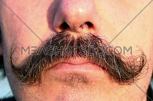 Mustaches Of a Man and angry face