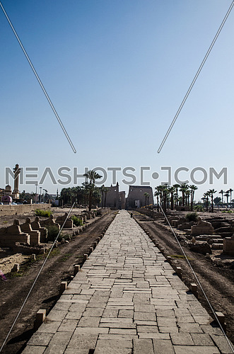 The Luxor temple with a passage way leads to it decorated by small Sphinx on each side in Luxor city