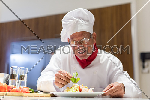 portrait of an elderly middle east cooks in the kitchen preparing salad