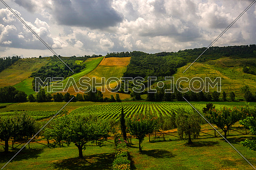 A green landscape in Tuscany Italy with cloudy sky