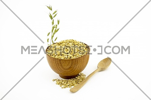 Oat flakes in the bowl, wooden spoon and oat branch isolated on white background