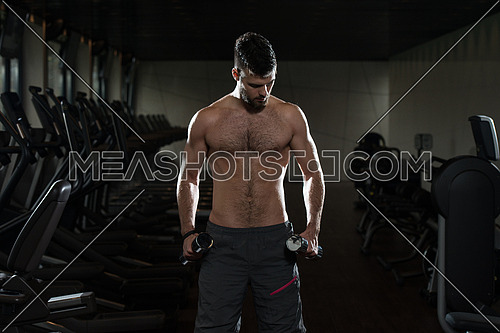 Young Man Exercise Biceps With Dumbbells - Dumbbell Concentration Curls