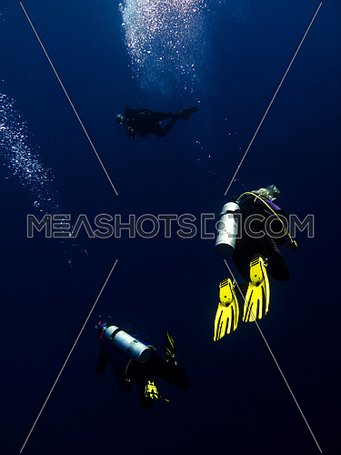 3 divers in deep blue water  in the red sea egypt