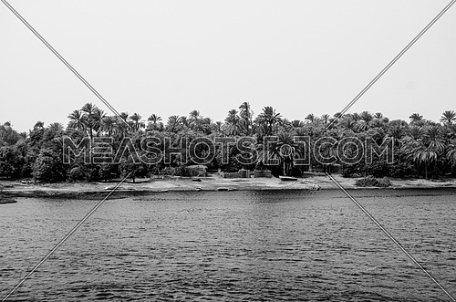 Long shot for the river Nile surrounding land, trees and plants at day in black and white