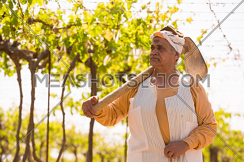older middle eastern farmer walks on a large modern farm