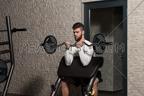 Young Handsome Man Exercise Biceps With Barbell