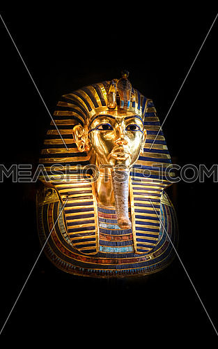 The Little Pharaoh (King Tut)