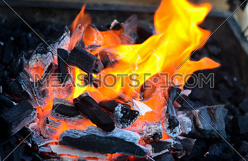 fire and coal bursts into flames