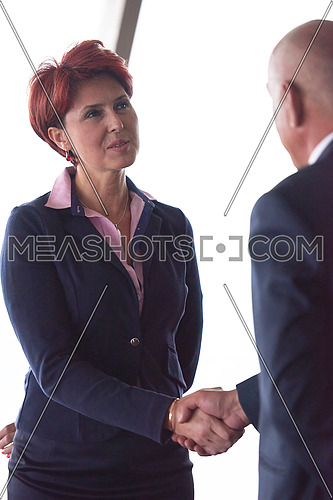 partnership concept with senior  business man and woman make hand shake and take agreement in modern office interior