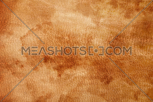 Old vintage aged brown orange color natural genuine leather grain with stains background texture close up