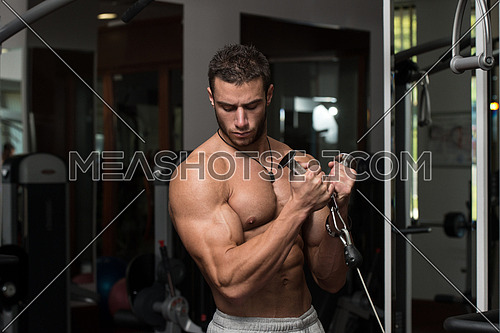 Young Athlete Doing Heavy Weight Exercise For Biceps