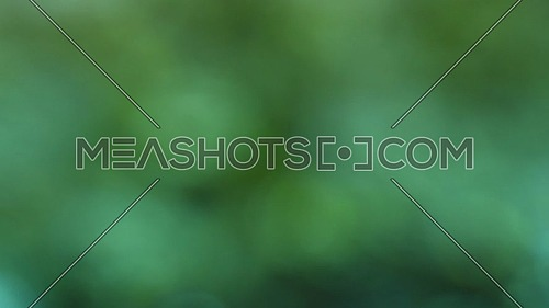 Abstract background of colorful dark green blur glitter of defocused water ripples, close up, slow motion