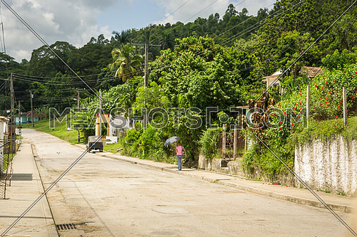 In the picture a girl with an umbrella for shade, walking on a street that passes in the middle of the jungle in Cuba