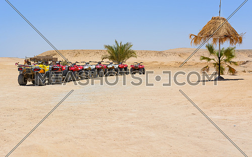 In the picture a row of oblique quad ready to be used and in the background the Egyptian desert