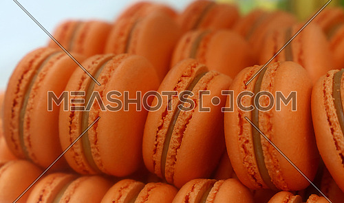 Fresh baked orange macaroon pastry cookies (macarons, macaroni) in retail store display, close up, low angle view