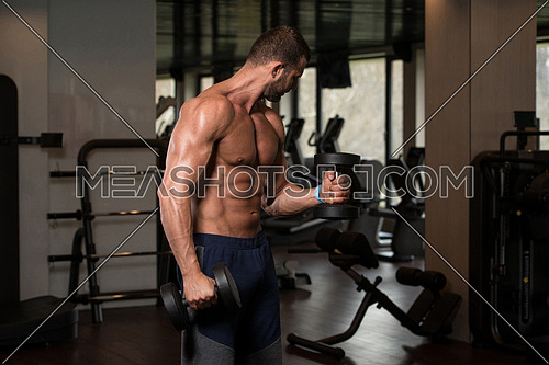 Young Athlete In The Gym Performing Biceps Curls With A Dumbbells