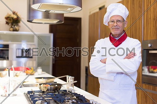 portrait of an elderly middle east cooks in the kitchen