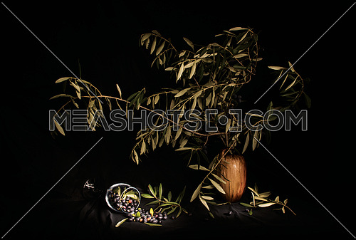 Olive Harvest in dark light