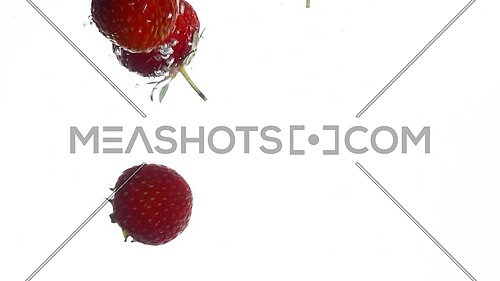 Close up several fresh red ripe strawberries thrown and floating in clear transparent water, low angle side view, slow motion