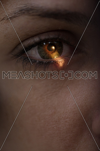 close up on human eye showing light on cornea