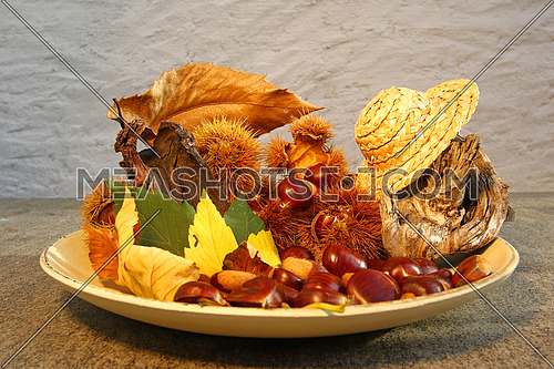 Colorful plate of healthy chestnust decorated with colorful fall leaves and bark
