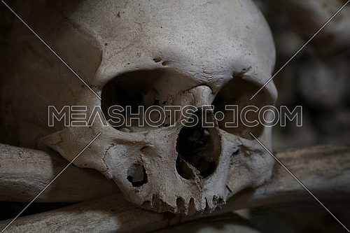 Close up of old human skull and bones, low angle view