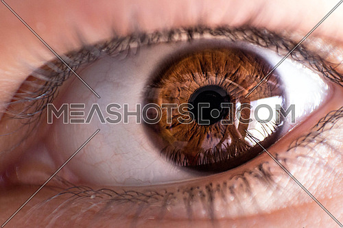 A close up of a brown eye