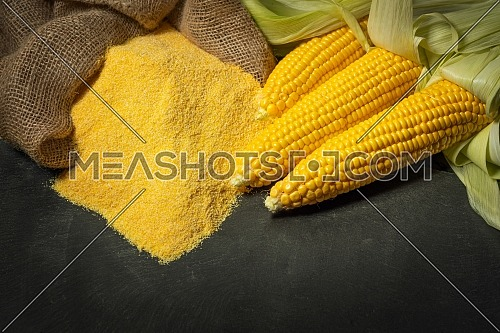 Ripe young sweet corn cob,on left stack cornmeal on dark background, copy space.Gluten free food concept