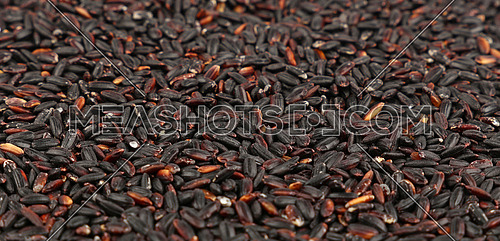 Black purple raw unhulled long grain rice close up pattern background, low angle view, selective focus