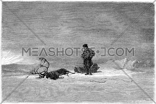 """1866 Painting in a Salon called """"Winter in Lapland"""", showing a traveller looking over his dead reindeer, vintage engraved illustration. Magasin Pittoresque - 1867"""