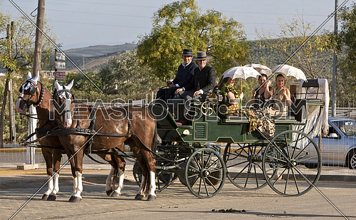 Carriage pulled by two horses, Spain