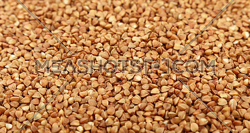 Dried brown buckwheat (Fagopyrum esculentum) groats close up pattern background, high angle view, selective focus