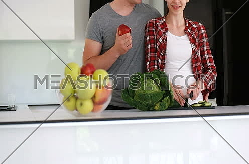 Happy Couple In The Kitchen At Home preparing dinner
