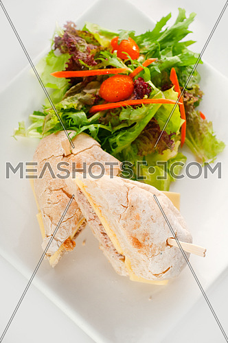 tuna fish and cheese sandwich with fresh mixed salad ,MORE DELICIOUS FOOD ON PORTFOLIO
