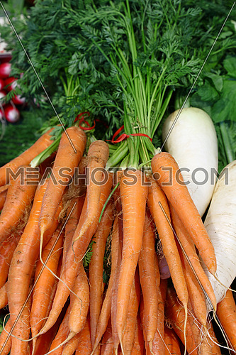 Bunches of fresh new spring orange carrots with green top leaves on retail market stall display, close up, high angle view