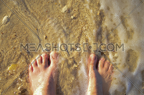 female feet standing on the beach