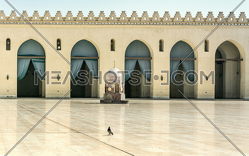 ELHakem Mosque exterior floor with a bird in the middle