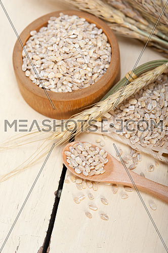 organic wheat grains  over rustic wood table macro closeup
