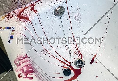 scene of a crime in a bathroom with tracks of blood, conceptual image