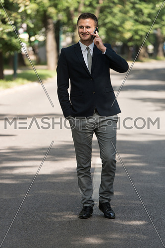Young Businessman Talking On The Phone While Walking Outdoors In Park