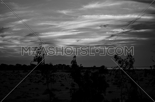 black and white of clouds at the sky in the middle of the desert with few trees and bushes appears and few buildings