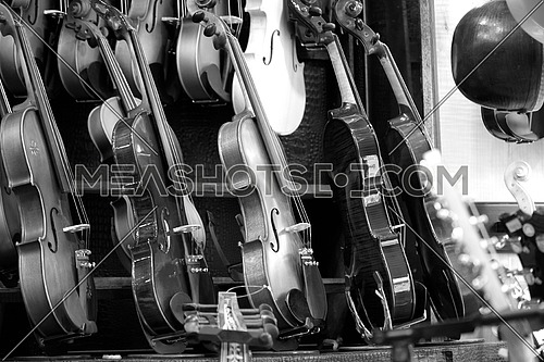 Market of musical instruments and violins are presented together in black and white