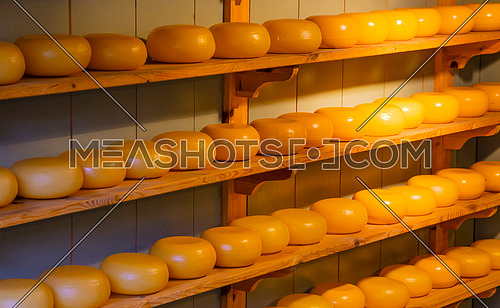 Close up wooden shelves with rows of small whole heads of hard cheese on retail display, low angle view