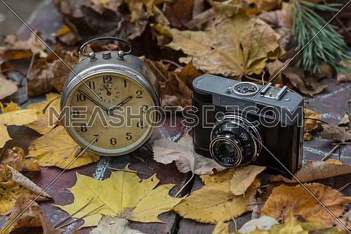 Old clock and camera on leaves as background