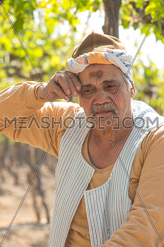 an egyptiam farmer tired wiping sweat in the farm