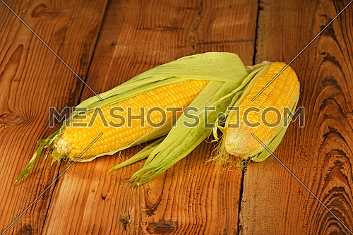 Two open fresh yellow corn cob with green husk on brown vintage wooden surface